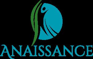 Logo anaissance web