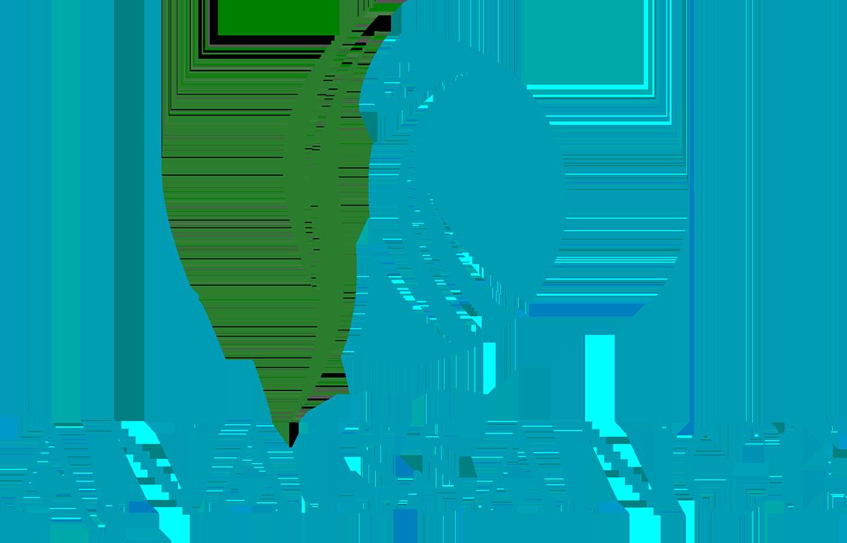 Anaissance